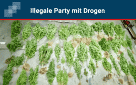 Illegale Party auf Marihuana-Plantage